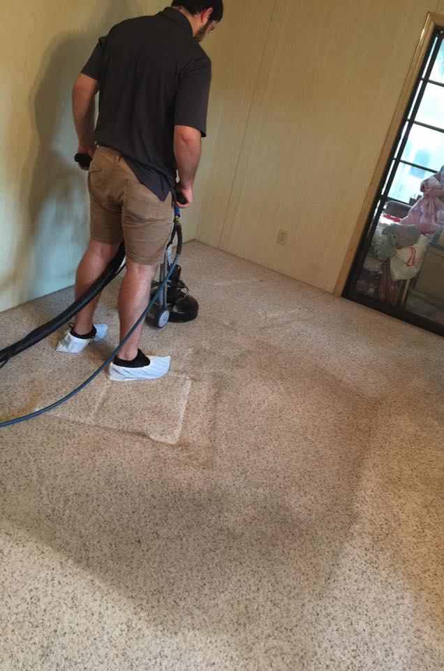 carpet cleaning Brandon